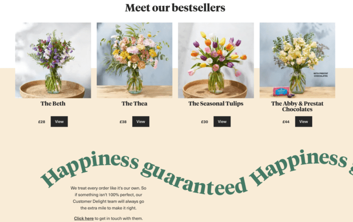 Homepage of bloom and wild